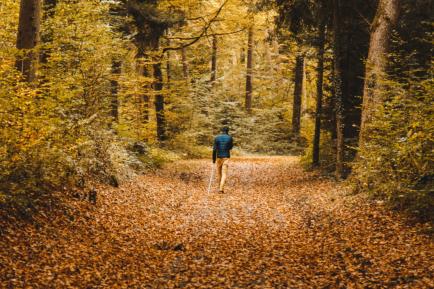 Herbstwanderung mit dem RC Rottweil